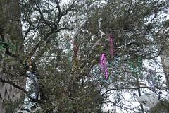 029 Bead Tree