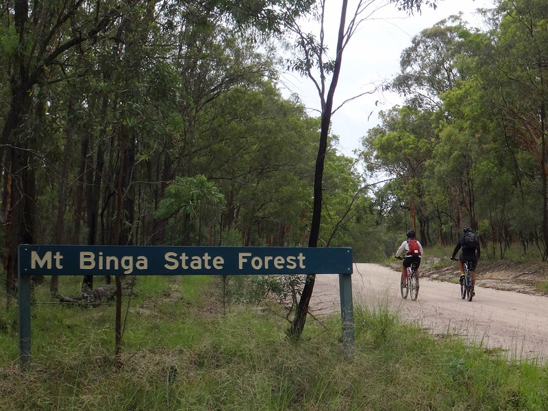 Mt Binga State Forest