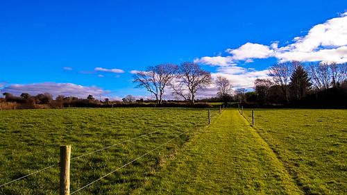 ireland canon fence landscape raw kerry tralee febuary 2015 landscapephotography irishlandscape lightandclouds tamron1024mm wetherswell