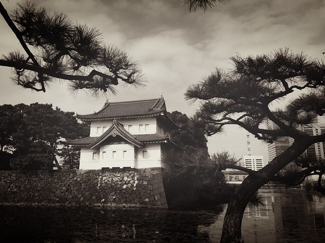 150225_ImperialPalace_iPhoneBW 2