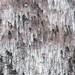 Soun-kyo Gorge by Alan Dreamworks
