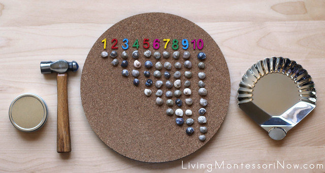 Hammering and Shell Counting Activity