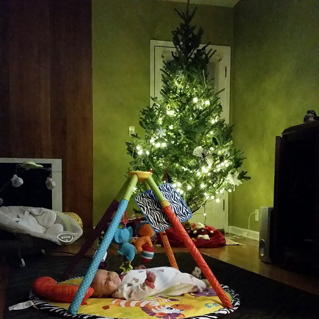 Baby's first tree. Neil went to get more lights...