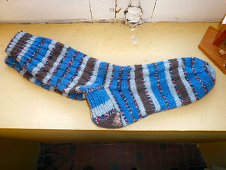 REGIA World Circus blue socks 2