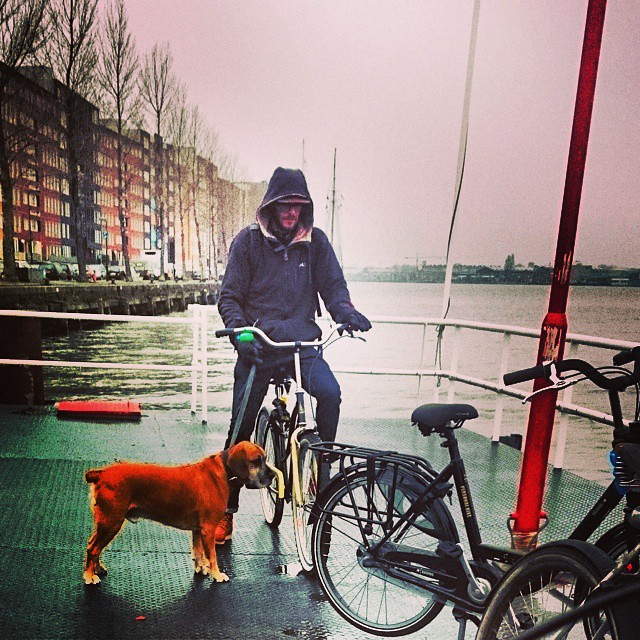 Dog waiting for the ferry #amsterdamnoord #amsterdam #ilovenoord #dog #cyclechic #ferry #oostveer