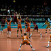 22/02/2015 Topvolleybal in Sportpaleis