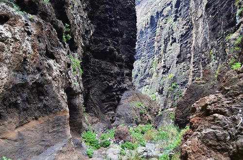 Walking, Masca Barranco, Buenavista del Norte, Tenerife