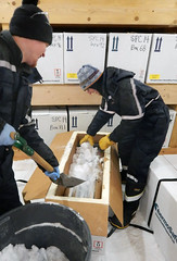 Packing the insulated shipping container (ISC) box with ice cores