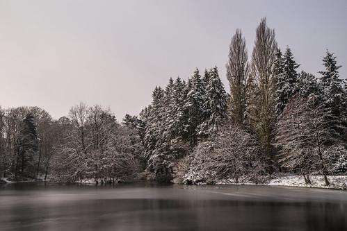 [15P52F4] Winter