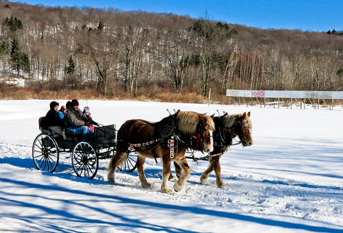 A Winter Carriage Ride