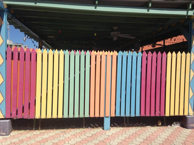 I love this colored fence!