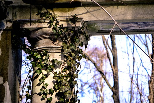 Zogg Ruins - Muttontown Preserve