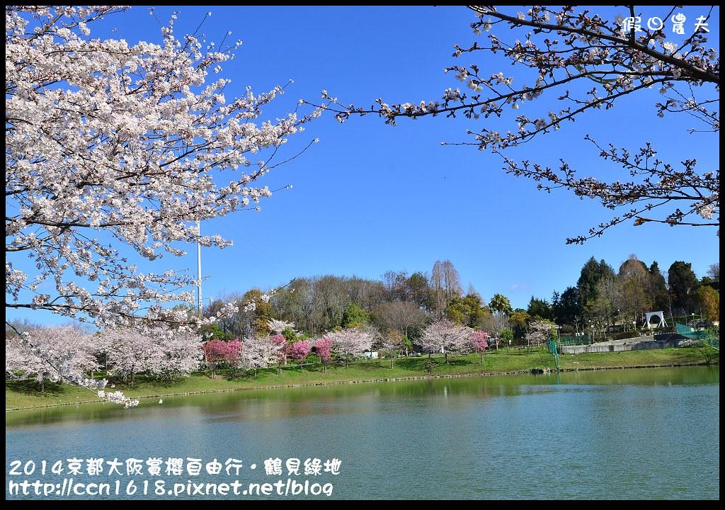 2014京都大阪賞櫻自由行.鶴見綠地DSC_1236