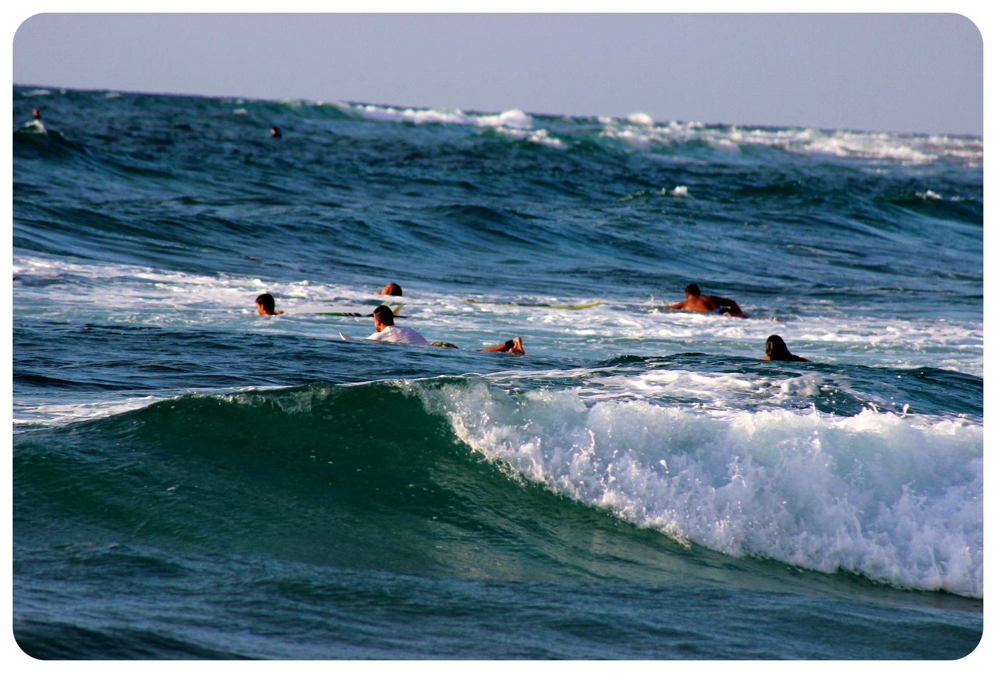 haifa surf