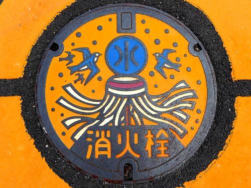 Shizuoka city Shizuoka pref, manhole cover 2 (静岡県静岡市のマンホール2)