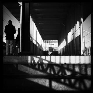 Mondrian grids