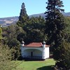 The Bandshell, Dunedin Botanic Gardens, 12:30pm Thursday March 12.