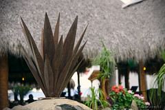 Agave made of metal