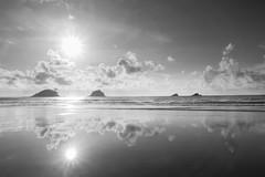 Paradise reflections