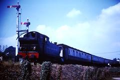 Dart Valley Railway/South Devon Railway