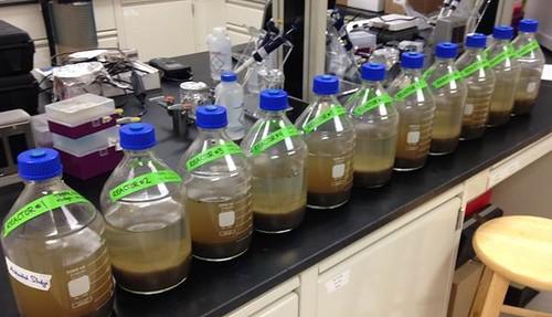 bottles in lab