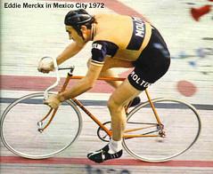 eddy-mercx Bike