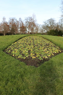 Planted Flowerbeds (2)