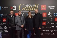 Catifa vermella VII Premis Gaudí (96)