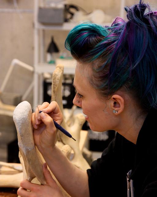 Whale Bone Repair Workshop Feb 8,9