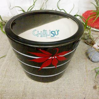 chausu24h.com | chau su | chau trong cay | chau su my nghe | chau gom su | chau bonsai | chau dat nung | chau su mini | chau su van phong | chau su cao cap