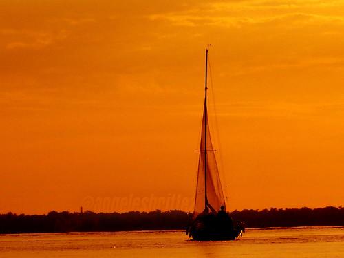 Nagegando a la serenidad // Sailing to serenity