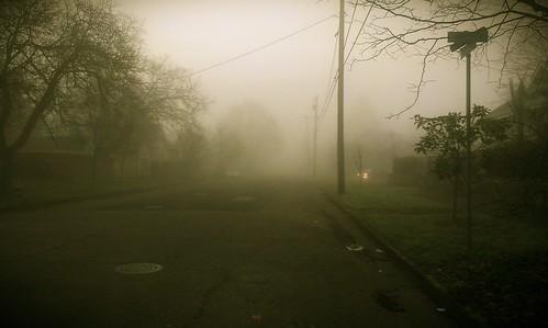 Morning fog in Woodlawn.