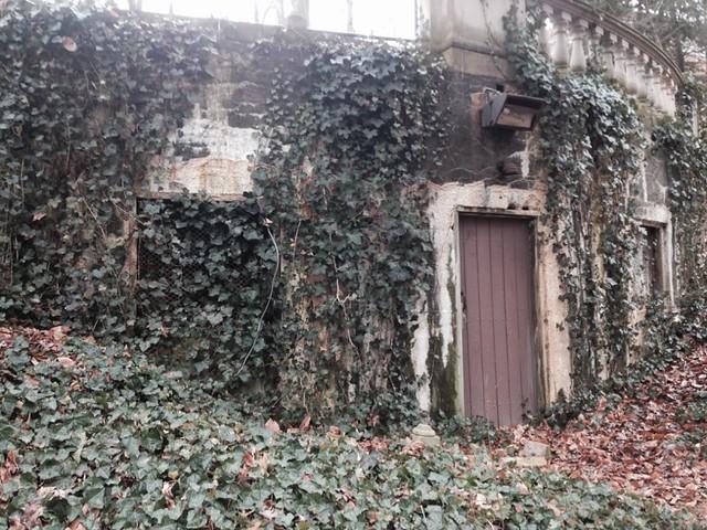 Abandoned Ampitheater