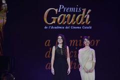 gala VII Premis Gaudí (51)