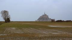 Mont Saint-Michel, Manche, Normandie, France