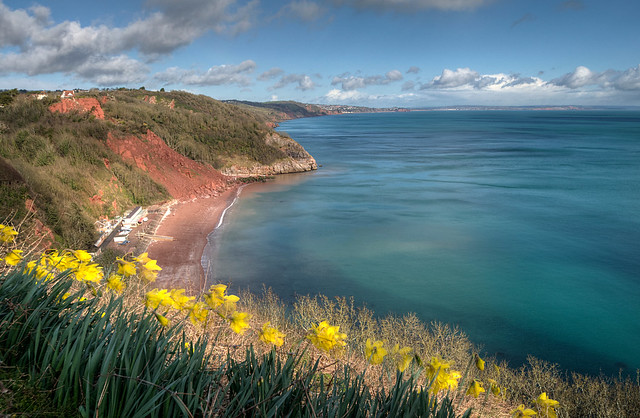Springtime on Babbacombe Downs Torquay - Western Morning View in The Western Morning News 9th March 2015