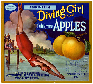 California apples crate label, Diving Girl Brand, Schmidt Litho. Co . | by California Historical Society Digital Collection