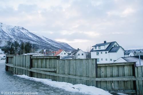 Tromssa (80)