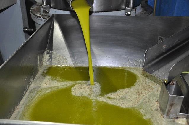 AionSur 16669221746_828f490c2c_z_d Andalucía supera a Cataluña y lidera las exportaciones agroalimentarias gracias al empuje del aceite de oliva Sin categoría Producción aceite