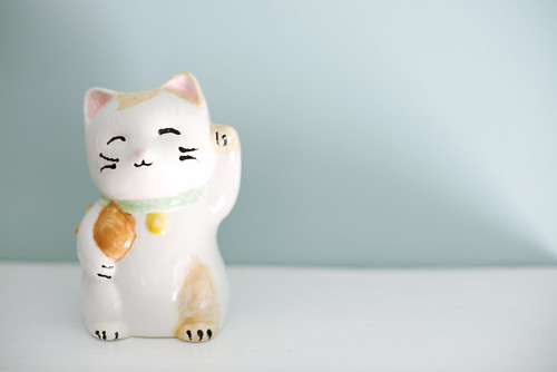 Kitty Coconut Lucky Cat!