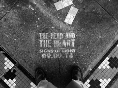 Me and The Head and the Heart