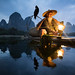 Chinese Cormorant Fisherman, Xing Ping, China by Joel Santos - Photography