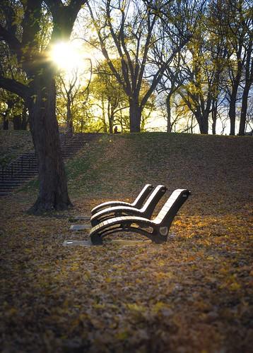 park autumn sunset montreal parclafontaine autuum