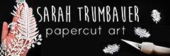 sarah trumbauer 3