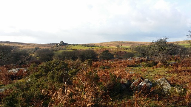 Vixen Tor from Longash open access