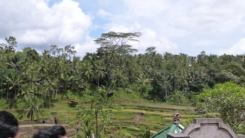 Bali-2-067