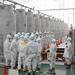 Fukushima Decommissioning - Feb 2015
