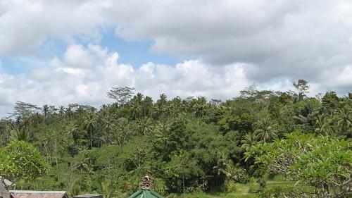 Bali-2-066