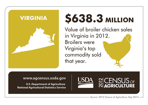 Virginia State Infographic