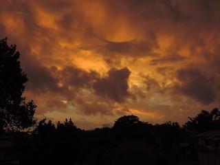 Sunset 101